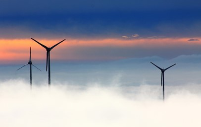 How The 7 Types Of Renewable Energy Can Benefit The Environment